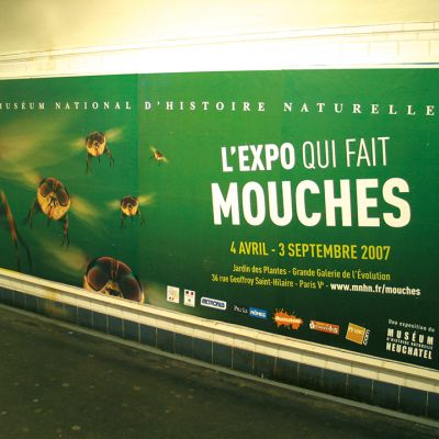 MOUCHES 02